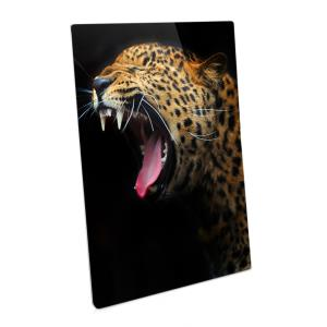 ChromaLuxe Metal Photo Panels - White Semi Gloss